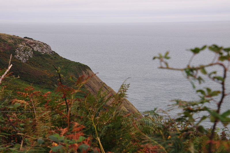 Cannon Rock and Irish Sea seen from Cliff Path - Howth
