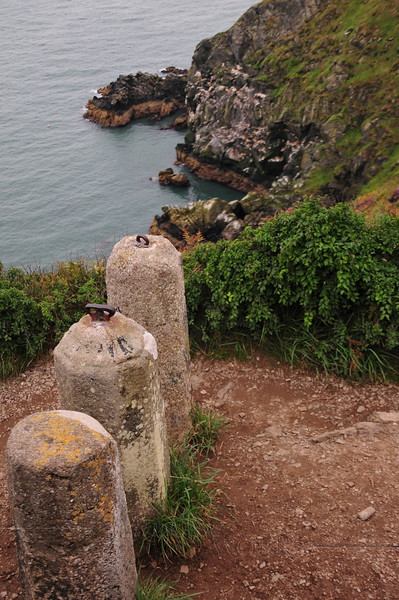 Posts (?) on Cliff Path above Balscadden Bay - Howth Head