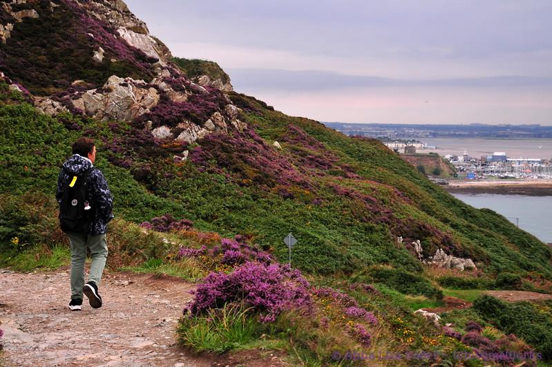 Xavier on Cliff path by Kilrock, overlooking Balscadden Bay - Howth Head