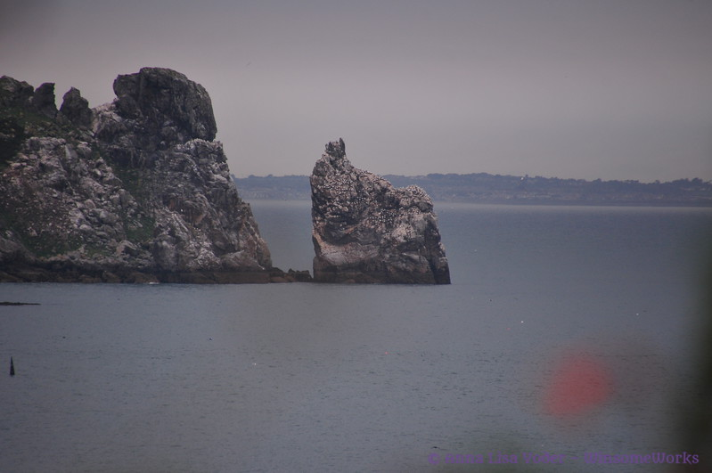 Telephoto image of Ireland's Eye & Balscadden Bay from Cliff Path - Howth Head