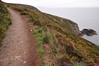 Looking down at Irish Sea from Cliff Path - Howth Head