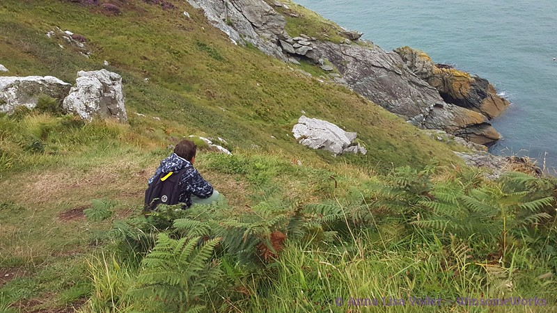 Xavier looking down at bay from near Cliff Path - Howth