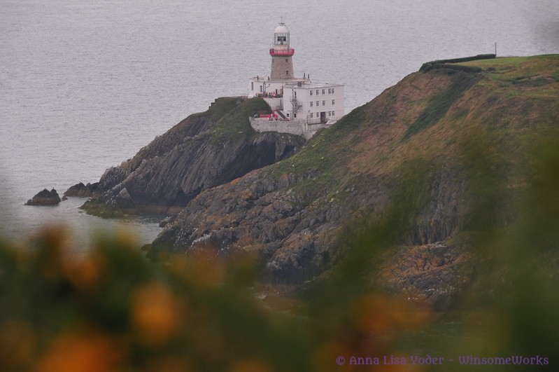 Baily Lighthouse with gorse in foreground