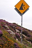 Falling rock sign along Cliff Path - Howth