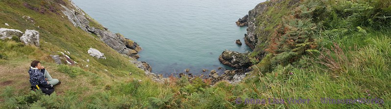 Pano with nephew along Cliff Path, looking down at Balscadden Bay - Howth Head
