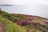 View of Ireland's Eye & Lambay from the Cliff Path