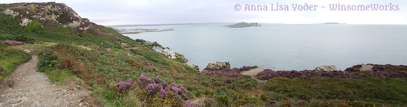 Along the Cliffs of Howth, looking out at Ireland's Buy