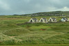 The sixtenth green at Lahinch.