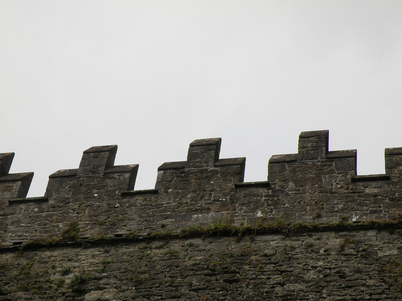 Bunratty Castle (detail)