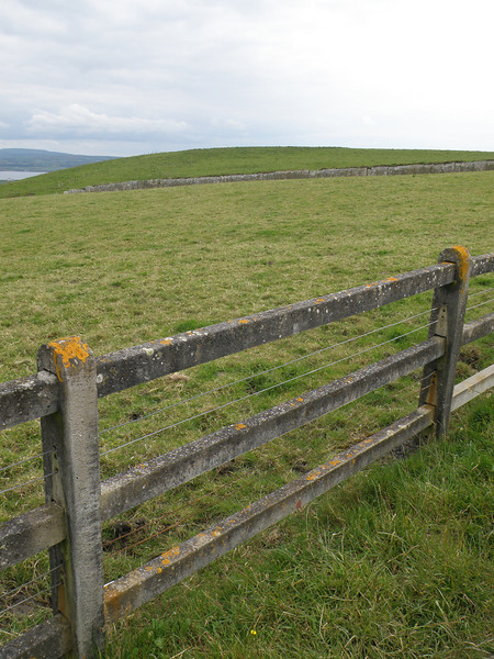 Stone fence, Cliffs of Moher