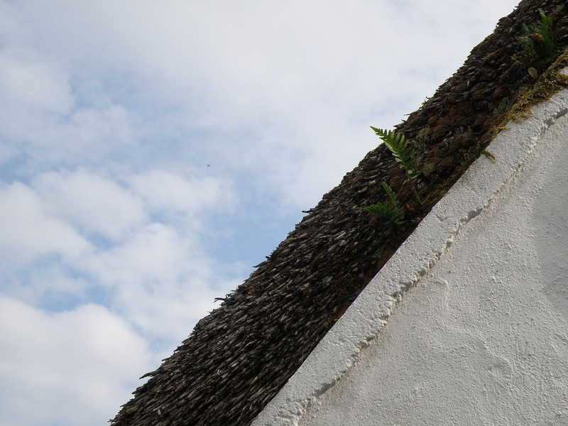 Thatched roof (detail), Cong, Ireland