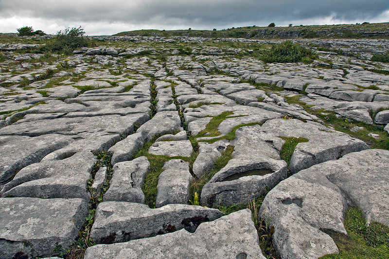 Closeup view of the fractured limestone, typical of the Burren.