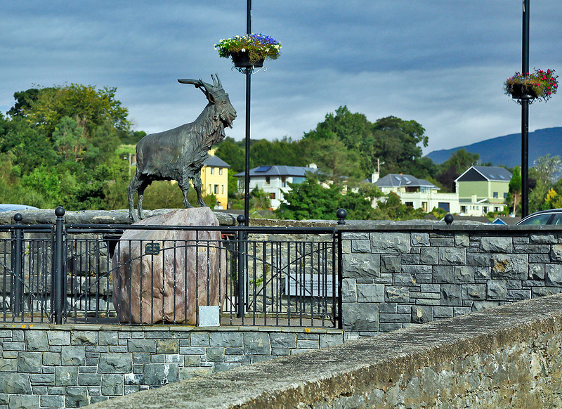 """This bronze statue depicts """"King Puck."""" For three days every August the County Kerry town of Killorglin celebrates the Puck Fair. This has been going on since 1603! Part of the event involves capturing a wild mountain billy goat, bringing it to town and crowning it """"King Puck."""" When the fair is over, the """"King"""" is returned to his mountain home (and is probably impossible to live with!)."""