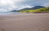 As we begin our drive along the south shore of the Dingle Peninsula we stop here to walk on Inch Strand, a sandy protrusion into Dingle Bay.