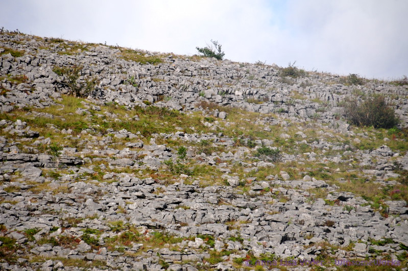 Stones on a hill in The Burren