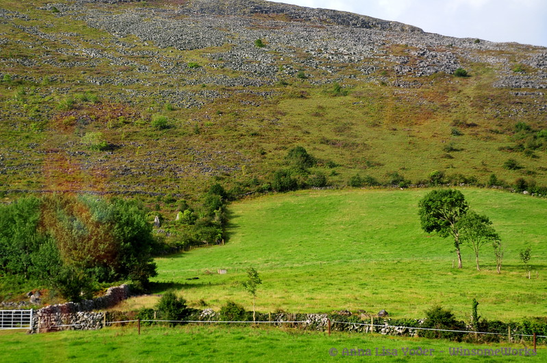 Edge of a hill in The Burren