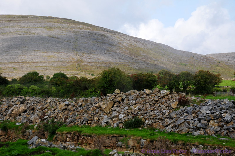 A mountain in The Burren area near west coast of Ireland (needs ID)
