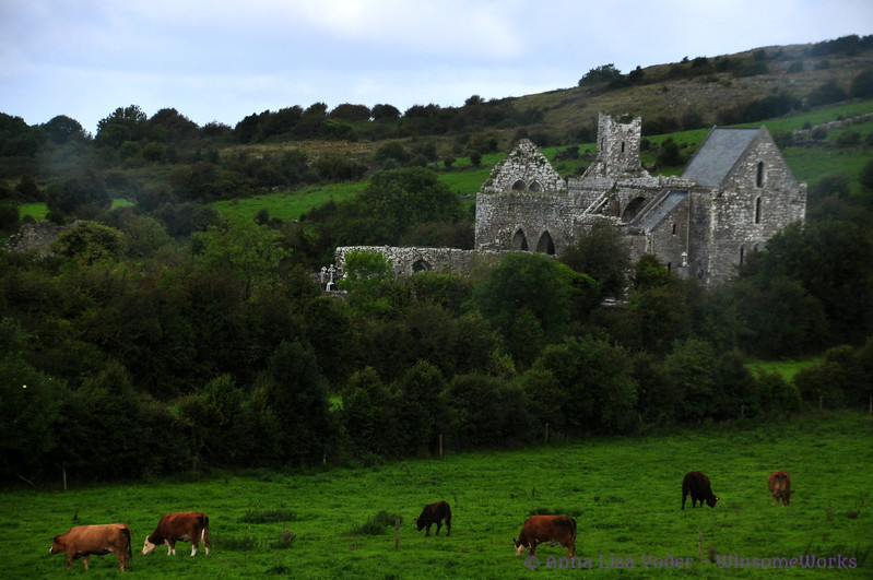 Old estate ruins in County Clare, seen on our Wild Atlantic Way tour
