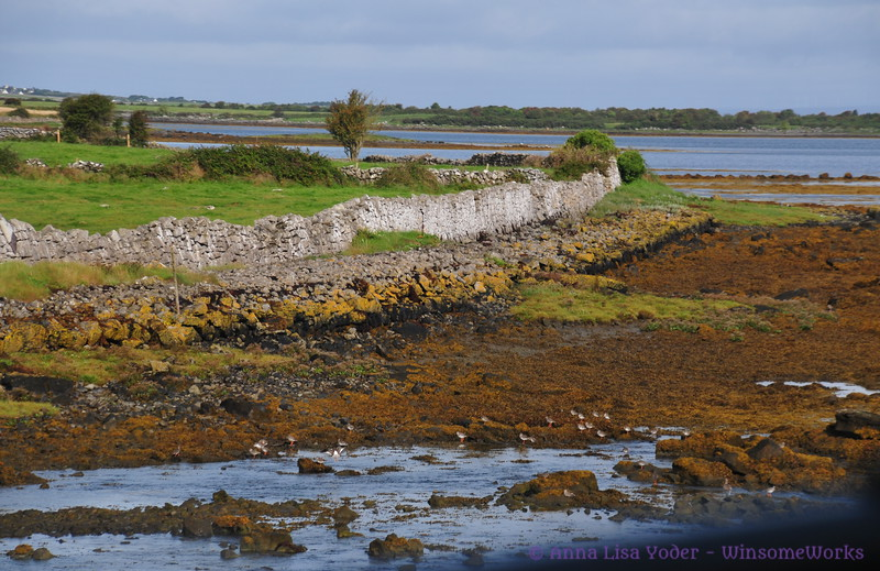 Low tide at the edge of Galway Bay