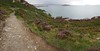 Kilrock, on Howth Cliff Path (overlooking Irish Sea, Ireland's Eye, & Howth Marina)