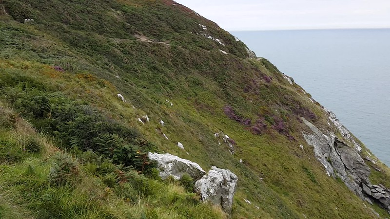 VIDEO - Howth Peninsula, looking out to the Irish Sea