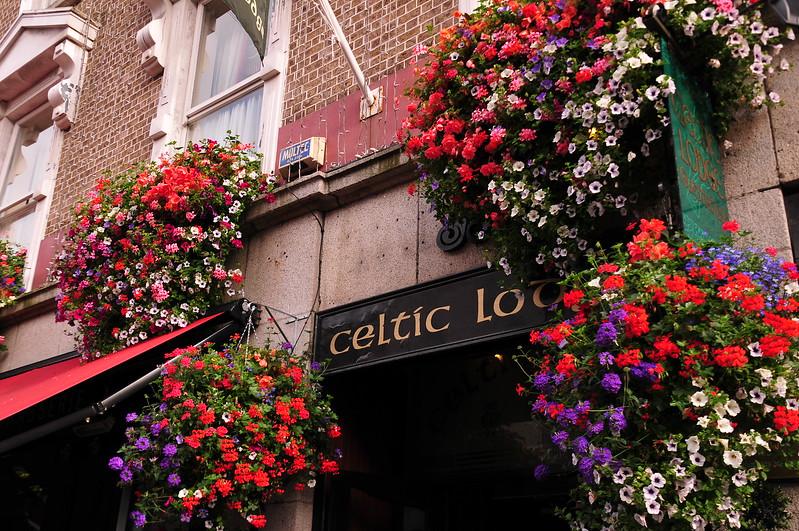 The Celtic Lodge