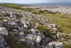 The Burren, along Galway Bay