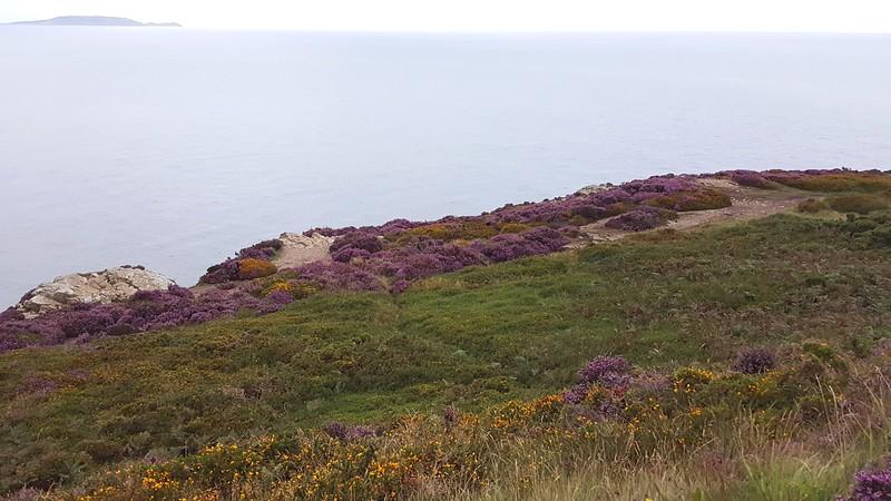 Overlooking Irish Sea & Lambay Island