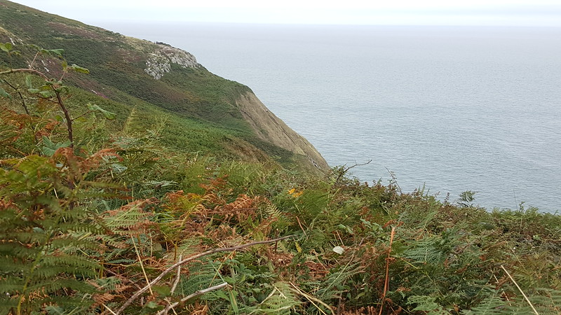 View of Cannon Rock from Cliff Path