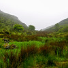 Carrowkeel Valley Mist