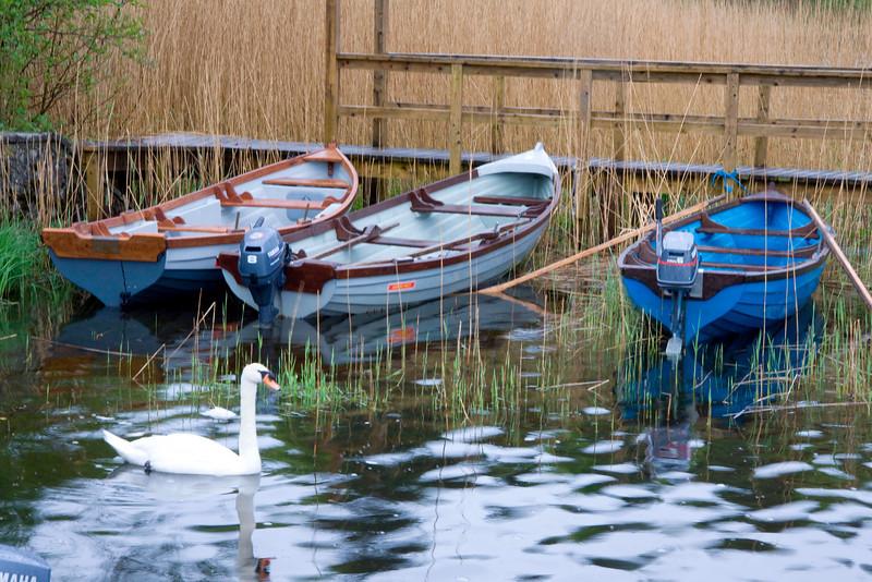 Ashford Dock 810