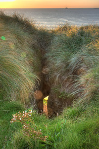 "The ""Goat's Hole' in the cliff below Tralee #18 ntee box, seen from behind the tee box."