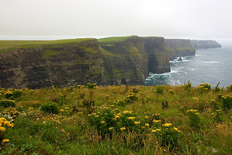 Cliffs of Moher, Ireland<br /> Copyright 2008, Tom Farmer