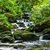 Owengarriff River 2