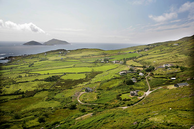 Patchwork fields of green on the Iveragh peninsula, County Kerry, Ireland.