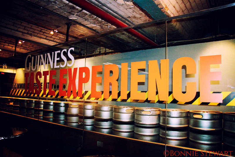 Guinness Factory Experience!