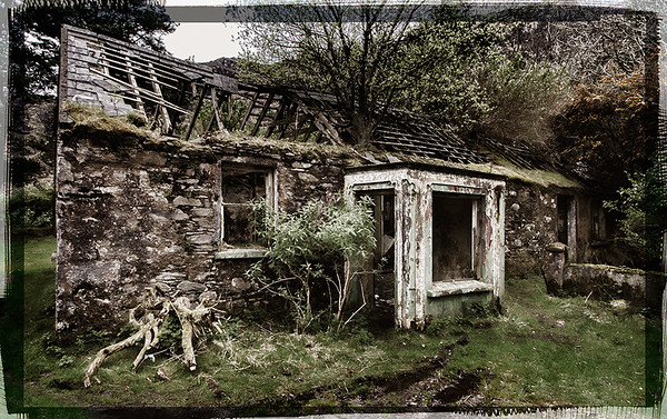 Abandoned Cottage