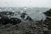Giant's Causeway in the rain, Northern Ireland