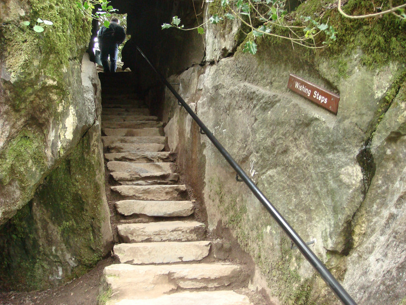 """Wishing steps in the <a href=""""http://www.blarneycastle.ie/pages/rock"""">Rock Close</a>, a set of rock formations on the grounds of Blarney Castle.  Legend has it that if you walk up and down these steps, backwards, with your eyes closed, a wish will be granted.  My wish was not to injure myself, which I achieved by <i>not</i> trying this."""
