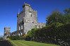 Knappogue Castle 0881