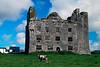Leamenagh Castle 0327