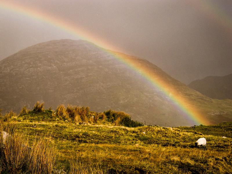 Connemara  Rainbow