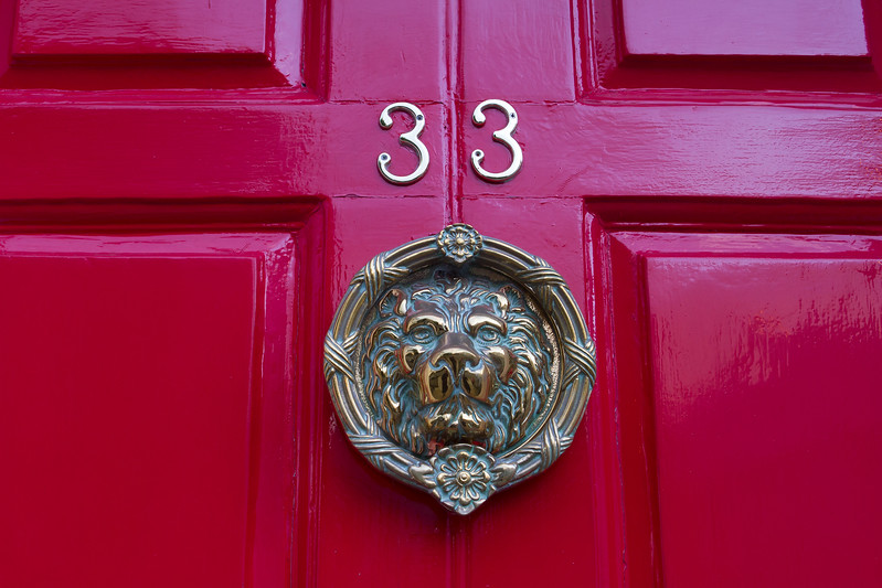 A fierce lion guarding a bright red door on Merrion Square