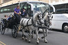 A jaunting cart ride in Dublin, just outsidet the Guiness brewery.