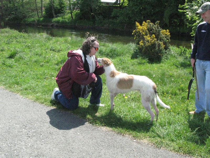 Leave it to Tanya to find a sighthound to make friends with.