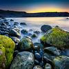 Mossy Green Oceanside