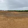 Abandoned Baseball Field.