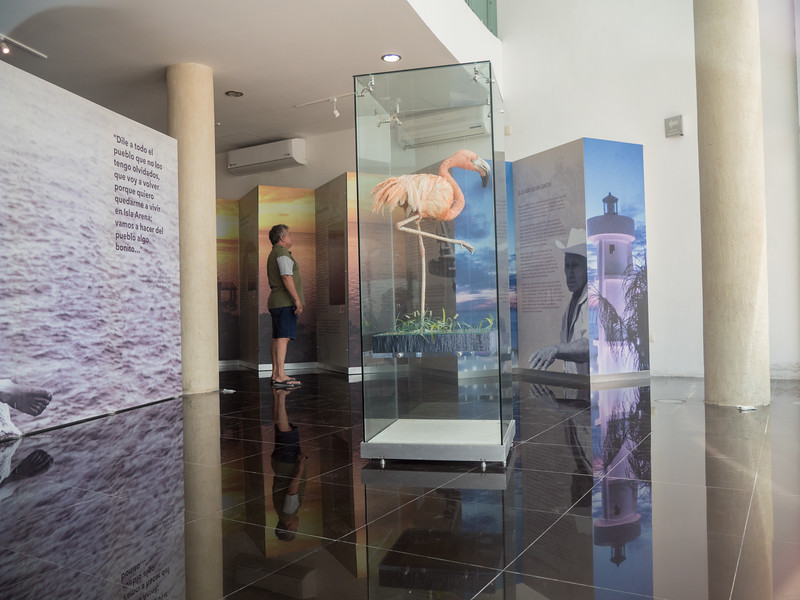 Flamingo,  Pedro Infante Museum