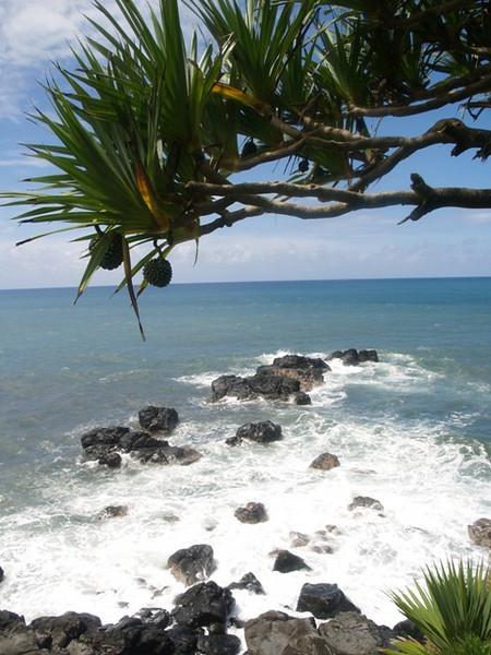 El mar de la reunion aunque bonito, no es como en Isla Mauricio