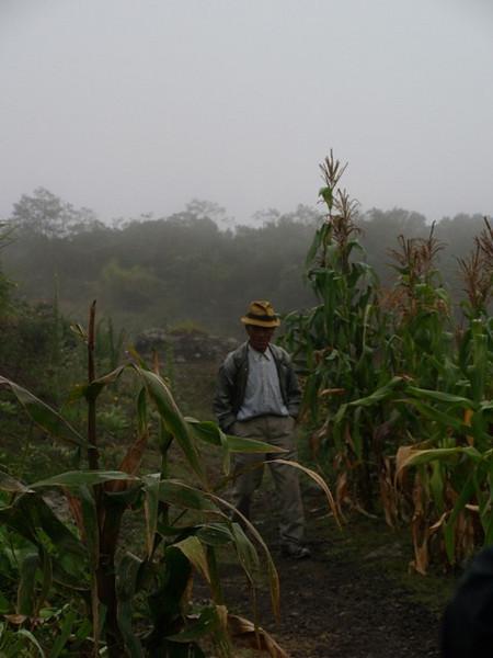 Un aldeano entre los campos de maiz de Mafate